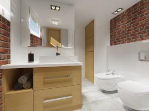 łazienka Strzelno 1U