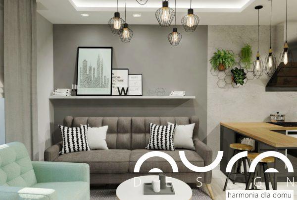 salon nowoczesny  z aneksem kuchennym 2